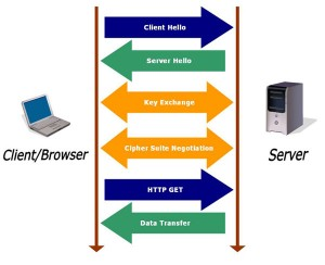 SSL process